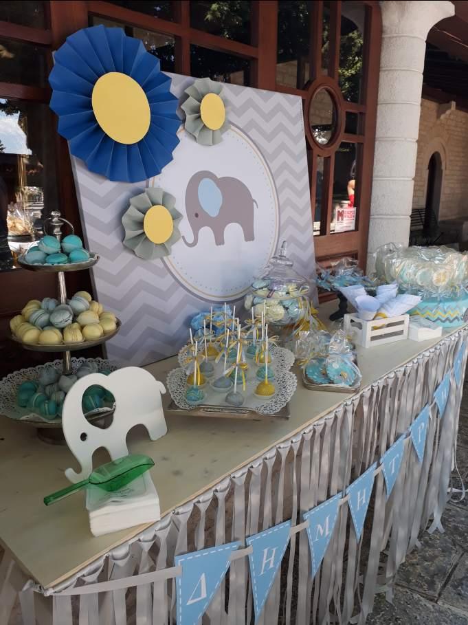 elephant theme baptism